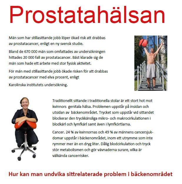 Prostata bild